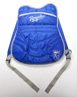 Chest Protector Backpack August 9.jpg